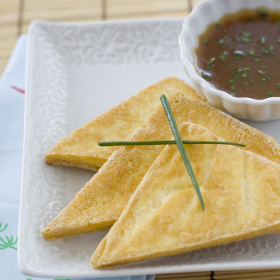 Thumbnail image for Crispy Tofu Triangles with Asian Dipping Sauce from The Whole Family Cookbook
