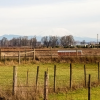 Thumbnail image for The Croft Farm on Sauvie Island — Portland, Oregon