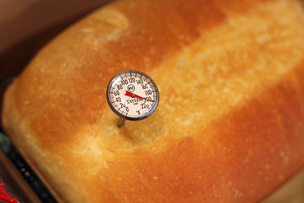Check the internal temperature of the bread