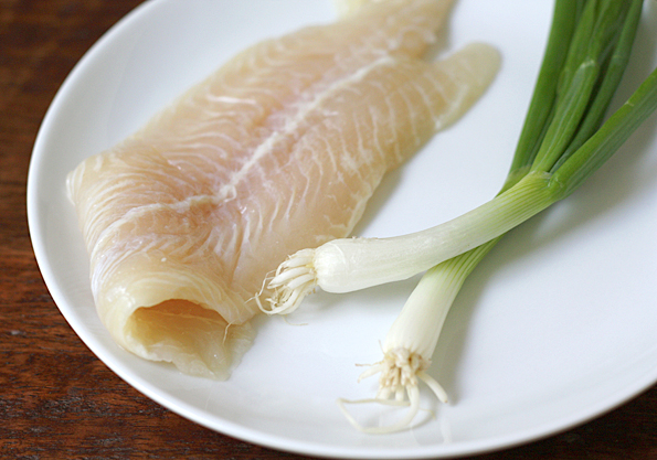 White fish fillet and scallions
