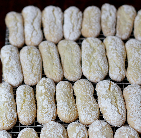 Homemade Savoiardi Biscuits