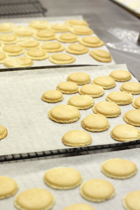 Macarons cooling