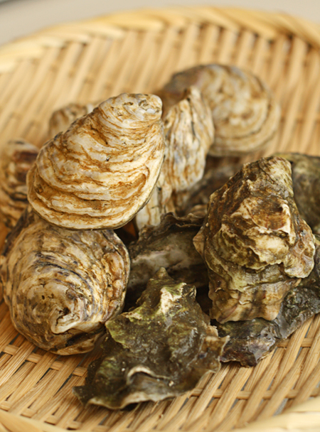 Fresh Point Reyes and Kusshi Oysters