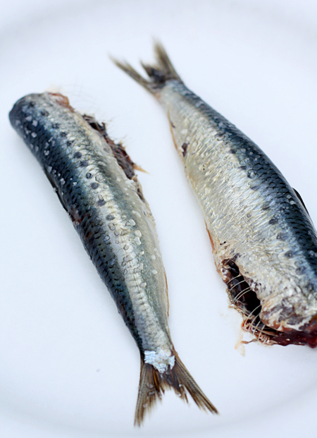 Headless sardines sprinkled with coarse salt
