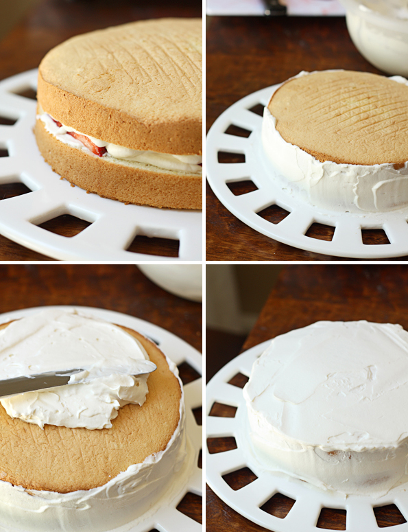 Frost the sponge cake with whipped cream frosting