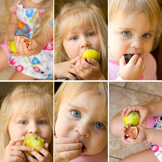 Feasting On Fresh Figs