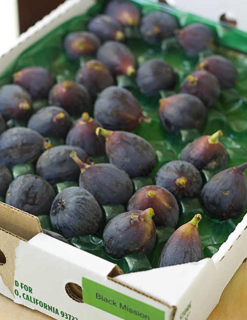 Fresh Black Mission Figs