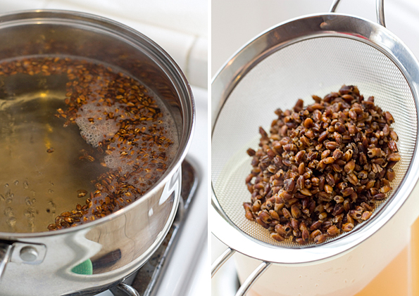 Steeping the toasted barley