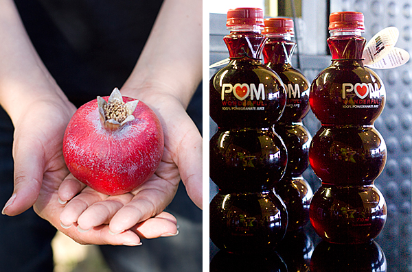 Pomegranates from Blossom to Bottle