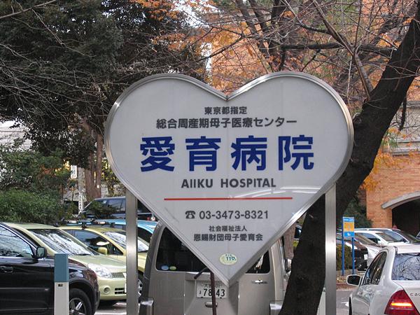 Aiiku Hospital, Tokyo, Japan