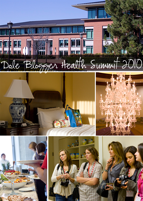 Dole Blogger Health Summit 2010
