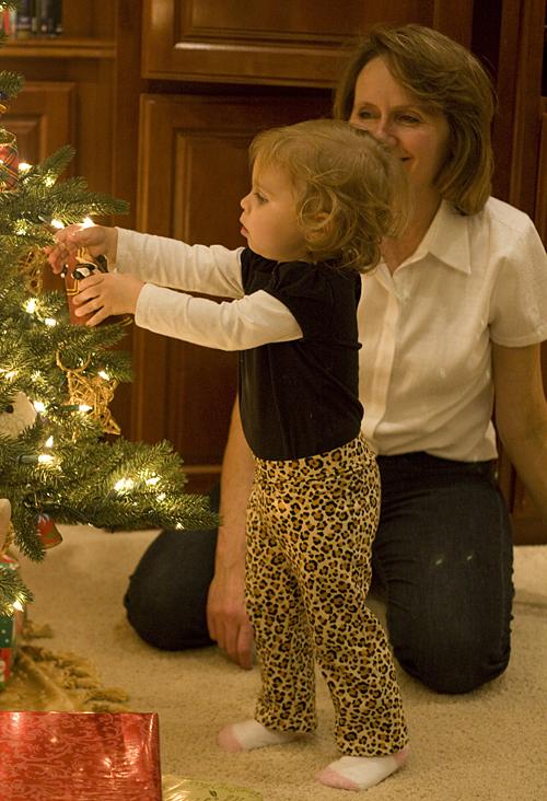 Bug checking out the Christmas tree