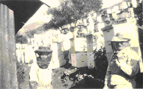 Honey Ridge Farms Beekeeping