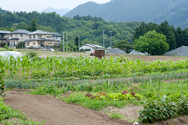 Fields in Kamikawa