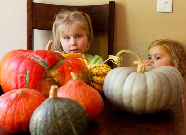 Fujilings iwth our pumpkin haul