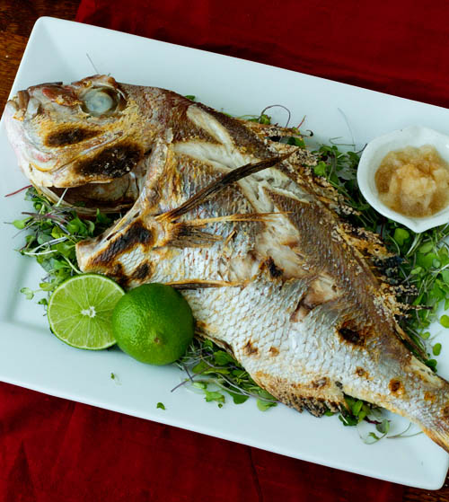 Tai no Shioyaki (Salt-Grilled Sea Bream)