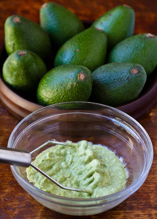 Mashing up a Fuerte avocado