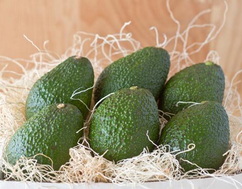 Avocados from California Avocados Direct