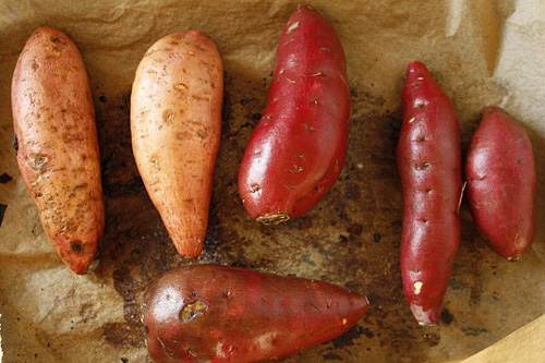 Menagerie of Sweet Potatoes