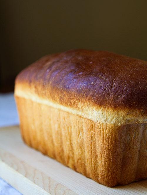 Milk Shokupan (Japanese Style White Sandwich Bread) Recipe — La Fuji ...