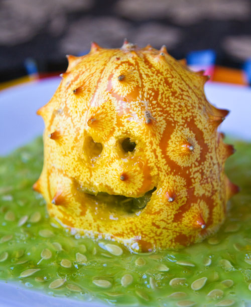 Kiwano Swamp Monster