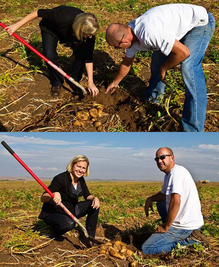 Potato Harvesting Lessons with Alex Tiede