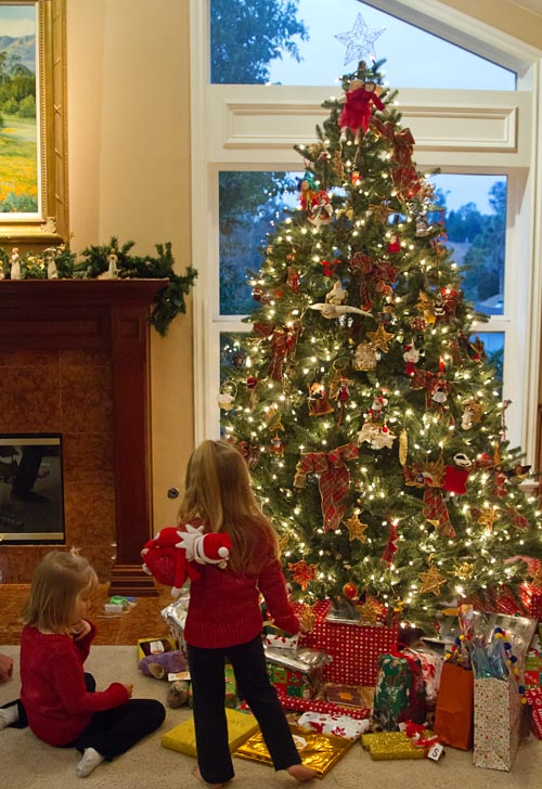 Enjoying the Christmas tree