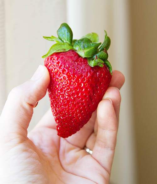 Fresh California strawberry