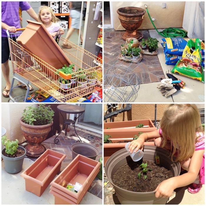 Planting the Fuji family garden