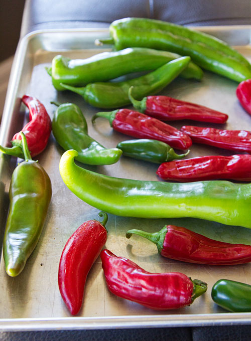 Fresh peppers from the garden