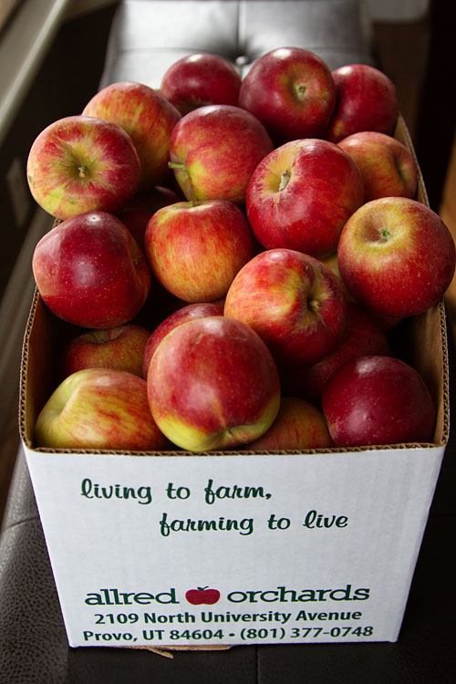 Box of Jonagold Apples
