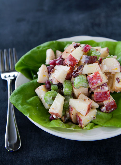 Holiday Waldorf Salad 2