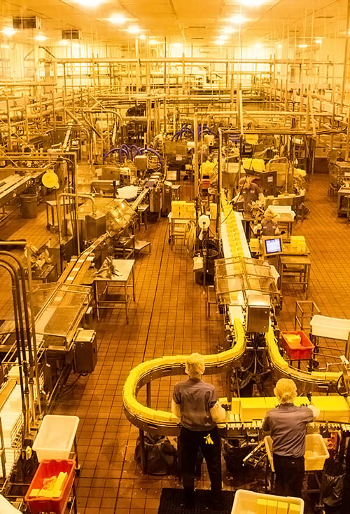 Inside the Tillamook Cheese Factory