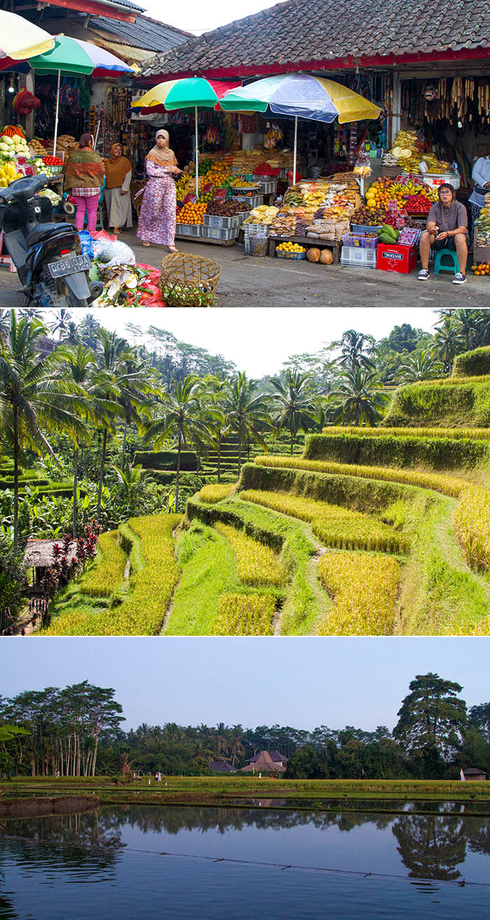 Market, rice terraces, and rice paddies in Bali, Indonesia
