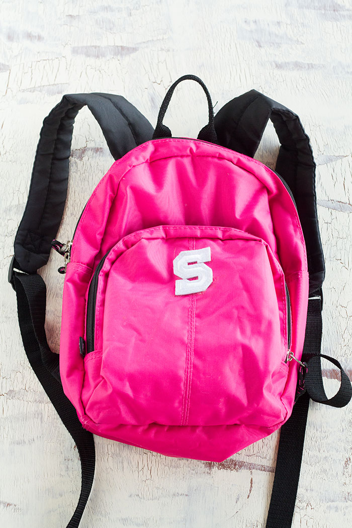 Backpack for a Travel Pack