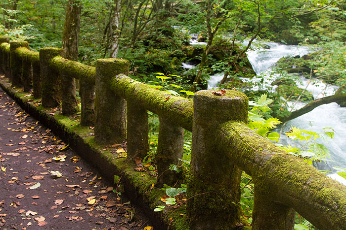 Moss covered railing in Oirase Gorge