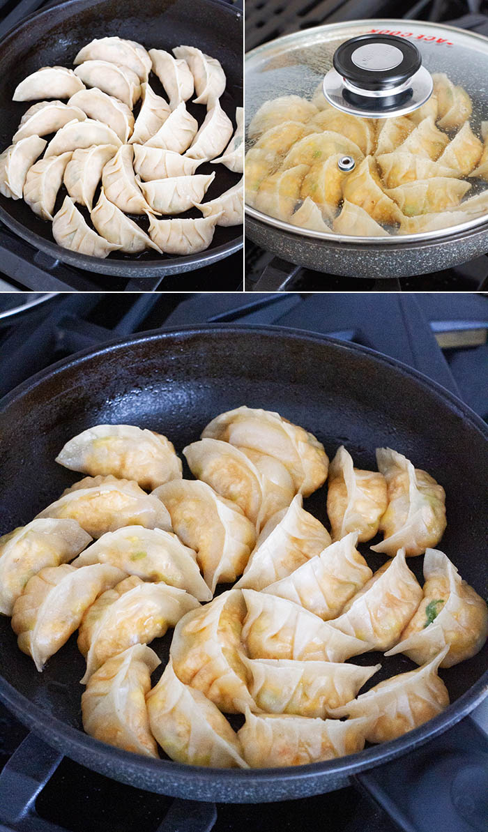 Cooking vegan gyoza
